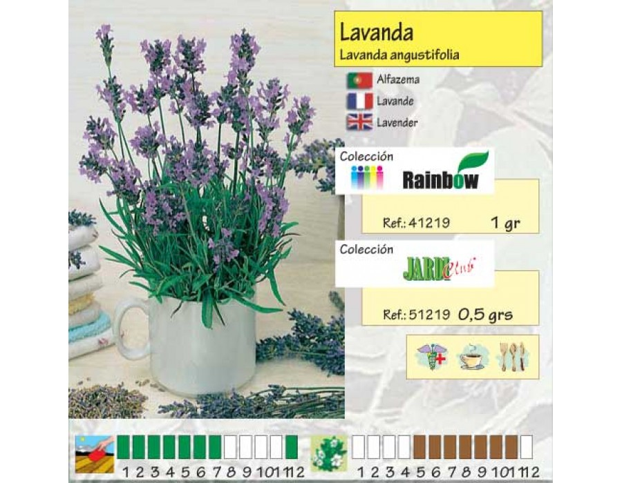 Semillas mascarell lavanda officinalis